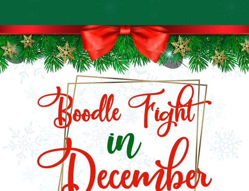 VOL 122. Boodle Fight in December